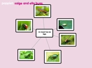 saige and ella popplet